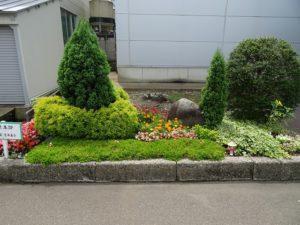 第1位 管理本部の手がけた花壇