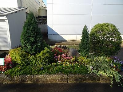 優勝チーム管理本部の花壇